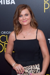 Amy Poehler Difficult People